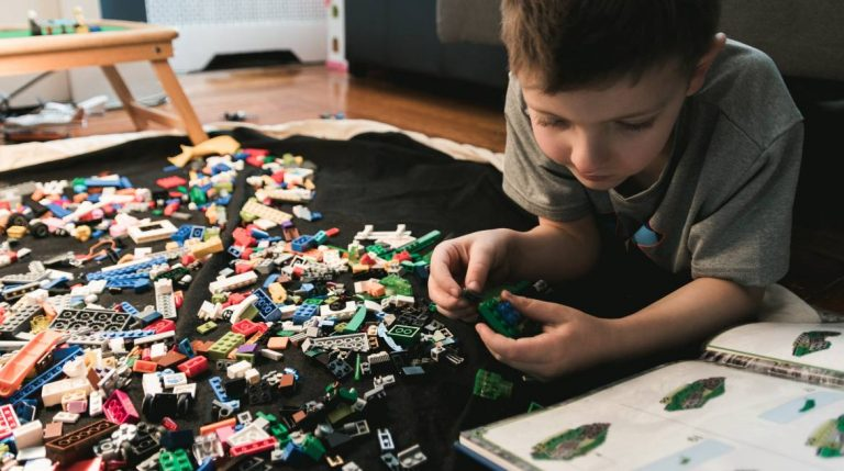 Young boy plays with LEGO bricks.