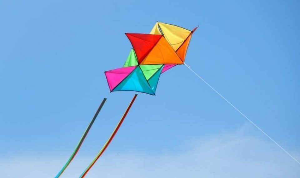 9 Buy Kites Best Kids In For Muddy Smiles To The 2019 0wPkn8O